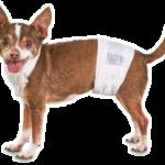 Male Dog Wraps